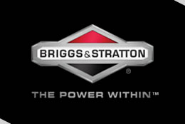 briggsstratton